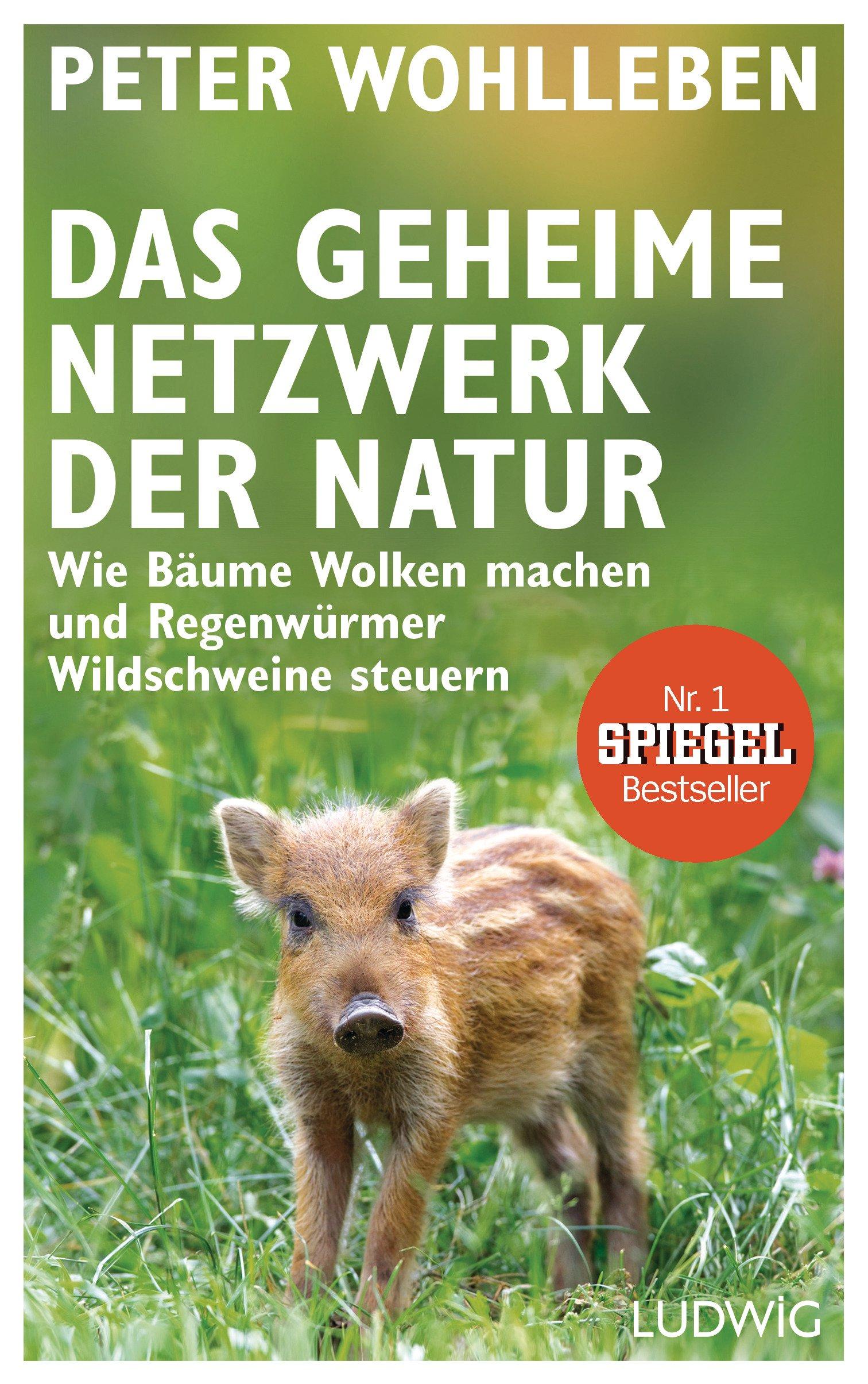 [Werbung] Das geheimne Netzwerk der Natur – Peter Wohlleben