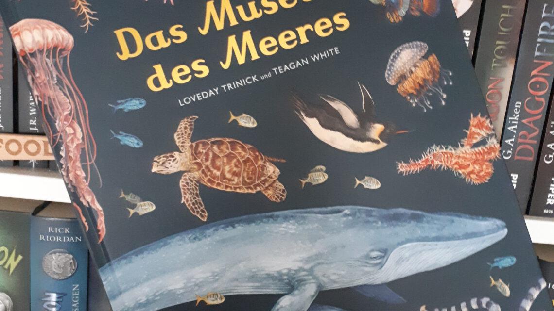 [Rezensionsexemplar] Das Museum des Meeres – Loveday Trinick & Teagan White